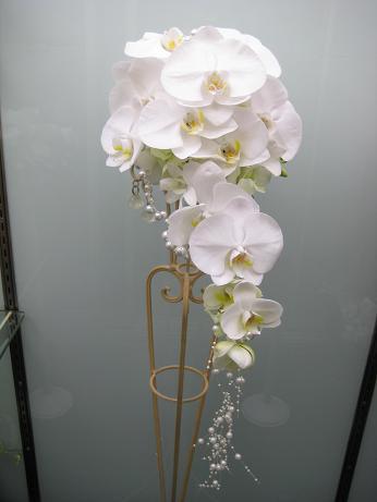 胡蝶蘭のキャスケードブーケ(f-001)